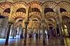 Mezquita de Córdoba (Perfect Gnat) Tags: mezquita cordoba architecture building church cathedral column andalucia interior people arch
