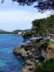Mallorca '15 - Santa Ponca - 09.Jpg (Stappi70) Tags: flora mallorca santaponca spanien urlaub