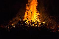 Into the flames (dharder9475) Tags: 2017 backyard bonfire closeup dark fire flame night privpublic
