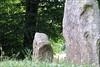 Wayland's Smithy V (meniscuslens) Tags: barrow tumulus long stones monoliths grass trees oxfordshire uffington waylands smithy