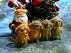 2018dogs (10) (tinyteensdolls) Tags: amigurumi amigurumipuppy amigurumidog amigurumidoggy puppy doggy crochet craft crochetmini crochettoy crochetminiature crochetpuppy crochetdog tinyamigurumi tiny toy miniature mini miniamigurumi handmade happynewyear newyear newyeardog newyear2018 2018
