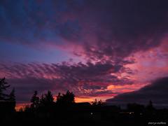 Sweet Sunset 12/17/17 (Sherrye's Art) Tags: sunset oregon winter tigard olympus sherryesteffens hapaphoto