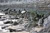 Al descubierto. (Howard P. Kepa) Tags: paisvasco bizkaia gorliz marcantabrico mareabaja rocas muro playa bajamar arena musgo resbaladizo