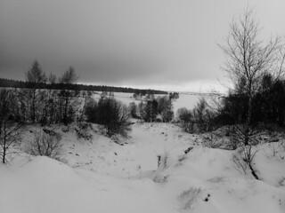 Promenades en forêt du Ché