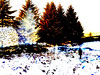 Threshold_0008 (troutcolor) Tags: convert imagemagick evaluatesequence
