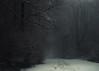 Homeward (Netsrak) Tags: atmosphäre baum bäume eu eifel europa europe februar forst landschaft natur nebel schnebel schnee stimmung wald atmosphere fog forest landscape mist mood nature snow tree trees woods meckenheim nordrheinwestfalen deutschland de