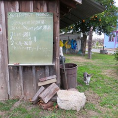 Last Year's Tally (Black Cat Bazaar) Tags: larkinranch exterminators pets farm maintenance cat shed rustic wooden chalkboard tally citrustree hamiltoncity california lastday 2017 newyear