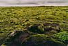 Eldhraun Moss Lava Fields (Simone Della Fornace) Tags: extremeterrain moss lava field iceland eldhraun horizon rockformation rocky remote nonurbanscene landscape hill wilderness outcrop landmark green wide endless travel nobody nature outdoor sony a7rii zeiss 18mm