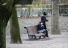 Les connectés de l'extrême (186/365) (chando*) Tags: banc bench brussels bruxelles cold femme froid gens hiver homme laptop man ordinateur ordinateurportable parcducinquantenaire people smartphone streetphotography winter woman