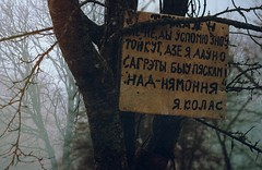 Misty poetry (no.sad.tomorrow) Tags: poetry mist misty villages village belarus belarusian culture poets writers traveling trees branches