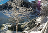 20180103-DSC_9193-Pano (the Mack4) Tags: 2018 geneseeriver ice january letchworth newyork panorama water bridge fence snow