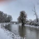 Walk along the river Kromme Rijn in Odijk, Netherlands - 0421 thumbnail