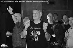 2017 Bosuil-Het publiek bij Joost de Lange en Band Of Friends 29-ZW
