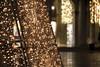 Christmas lights (bigbluewolf) Tags: nikon d750 venice venetian venezia christmas 2017 italy 24120mm lights tree star stmarkssquare piazzasanmarco piazza sanmarco san marco twinkle decorations decoration night dark sky