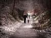 Dog Walker (Phil...H) Tags: snow dog dogwalker