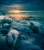 Morning has b-r-r-r-roken. (Todd Murrison (Whitby 61)) Tags: ajax lakeontario toddmurrison winter2017 december ontario canada canontse24mmf35lii canon5dmarkiv seagulls ccccold goldenhour motion tree snow ice boulders reflections mist clouds sky serenity splishsplashiwastakingabath polarizingcolours escarpment cliff shoreline 2017 oldmanwinter morninghasbroken catstevens