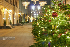Happy new year! (Max Ryazanov) Tags: christmas lights night christmastree newyear illuminated