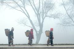 vl_05875 (Hanoi's Panorama & Skyline Gallery) Tags: asia asian sapa