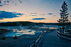 Yellowstone (lookingpixel7) Tags: yellowstone nationalparks usa nature animals mountains