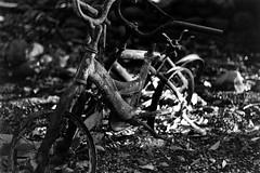 Burnt Bikes (bac1967) Tags: caffenol caffenolchrs instantcoffee coffee leica leicaiiic summitar summitar5cmf2 leitz leitzwetzlar summitarlens blackandwhitefilm blackandwhite bw monochrome monotone ilford ilfordpanfplus50 ilfordpanf50 rangefinder rangefindercamera 135film 35mmfilm 35mm film vintage atlasfire fire napa napaca napacalifornia california wildfire burnt firedamage firedamaged ash destruction destroyed damage damaged residentialfire 2017 bike bicycle bikes bycycles bokeh blur dof depthoffield napacounty