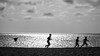 The Beach Race (mikederrico69) Tags: beach blackandwhite black beaches caribbean people dusk sunset summer sunny water sky seaside sea ocean sand run silouhette clouds aruba meditation reflection reflections island islands bird fly dark white bw