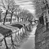 Passeggiata veneta (claudioesposito17) Tags: veneto piovedisacco blackandwhite alberi canale nikon d5300 photo