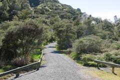 2017-110716 (bubbahop) Tags: 2017 rotorua newzealand waimangu volcanic valley