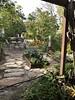 New open look of Tiki garden after hurricane (jungle mama) Tags: tiki greens kale collards dino bokchoy frame raisedbed flagstone porch living jungle collard radish zinnia marigold livinginajungle bromeliad
