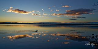 Calm Reservoir At Sunset