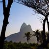 Windows to Rio (LynxDaemon) Tags: rio copacabana paotheacura mountain tree window frame framing natural light paodeacucar