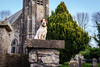 Things I see when I cycle (cogy) Tags: guard dog agher church summerhill meath ireland doggo curious old