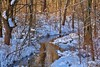 Country stream (David Juckett) Tags: hs is pretty what beauty winter has