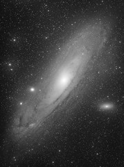 M31 - The Andromeda Galaxy (Luminance only) (Alessio Beltrame) Tags: astroimaging astronomy astrophotography bicolor cosmos deepsky fsq85edx photoshop pixinsight qhy163m qhyccd sky space stars star takahashi andromeda andromedagalaxy m31 luminance astrometrydotnet:id=nova2384098 astrometrydotnet:status=solved