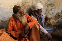 Pilgrims. Pushkar. Rajasthan. India (Tito Dalmau) Tags: men pilgrims pushkar rajasthan india