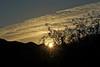 Arizona Sunrise (craigsanders429) Tags: cloudsandsky clouds cloudsandmountains sunandclouds sunrisephotography sunrise arizona tucsonarizona mountains santacatalinamountains