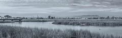 Arrowhead Marsh Pano (luqmac) Tags: nikond610 landscapes scenic martinlutherkingjrregionalshoreline oaklandcalifornia eastbayregionalparkdistrict eastoakland elmhurstcreek weather wetland arrowheadmarsh panorama ebrpd ebparks bayarea thebay oaklandca nikoncameras darrylmcelroy clouds sanleandrobay salesforcebuildingsf