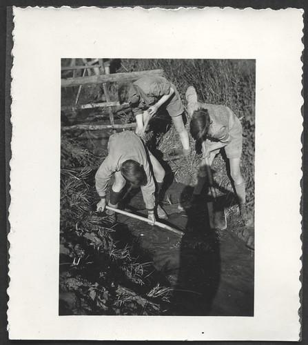 Archiv O560 Arbeitseinsatz der HJ am Bach, 1930er