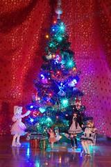 DSC05778 (myshax86) Tags: christmasfamilyphoto pureneemo picconeemo azone alisa koron wilczuś himeko himeno lycee kłaczek fuzzball