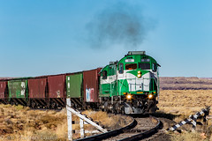 APA 98 South: Holbrook, Arizona (Z-Trains) Tags: bnsf arizona seligman subdivision sub apache railroad apacherailroad seligmansubdivision northernarizona trains train alco mlw c420 c424