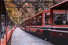 DSC_2082 (juor2) Tags: d4 nikon scene japan maple toyama train travel kurobe unazuki pool river doom bridge