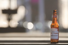 The morning after.... (S Cansfield) Tags: bottle beer budweiser sunday morning bokeh nikon d300 70300mm hull dof