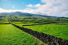 Terceira Island, Azores (Gail at Large | Image Legacy) Tags: 2017 azores açores ilhaterceira miradourodopicomatiassimão portugal terceira gailatlargecom