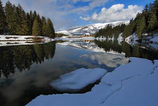 Winter reflectiveness