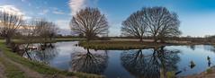 Bend in the Stour, Dedham Vale (g a r y e a s o n + f l i g h t a r t w o r k s) Tags: constablecountry dedhamvale riverstour countryside farmland riverside waterside willowtrees