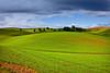 Palouse County (klauslang99) Tags: nature naturalworld northamerica klauslang palouse county washington landscape hillsides hills fields