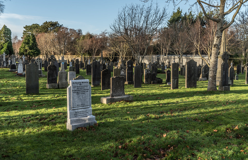 VISIT TO GLASNEVIN CEMETERY IN DUBLIN [FIRST SESSION OF 2018]-135117
