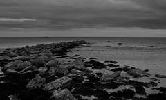 (Patrick Coscoran) Tags: beach wexford weather rocks sea seaweed ocean