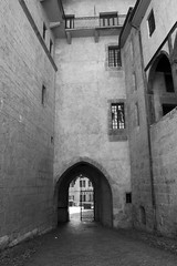 Chambèry, France (igorigor88) Tags: chambery francia france castello castle chateaux biancoenero blackandwhite black white bianco nero bw bn ingresso cancello gate entrance entrata palazzo building palace edificio costruzione history storia construction architettura architecture travel trip vacation holiday viaggio vacanza nikon nikond3300 gita auvergne rhones alpes alpi alps mountains montagne finestre windows
