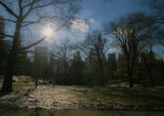 Manhattan skyscrapers from Central Park (A Costigan) Tags: manhattan newyork skyscraper