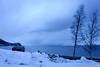 The winter in the North (norella.giorgia) Tags: winter snow arctic tree bianco white neve inverno mare sea tromsø norway norvegia travel landscape paesaggio nature sky clouds nuvole cielo cabin north